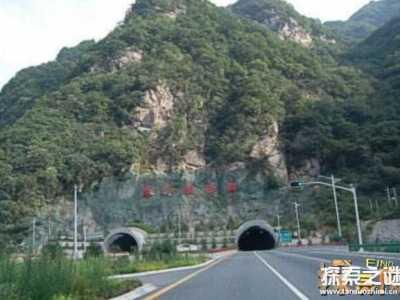 秦岭隧道灵异事件挖出大蛇 秦岭最大的蛇有多大