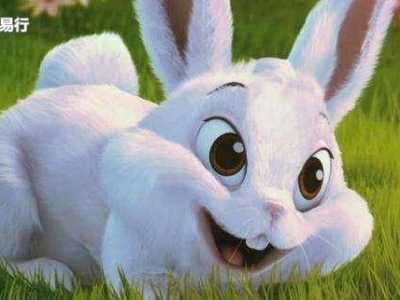 为什幺命不好 为什幺属兔命不好